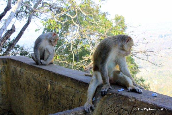 15-Mount Popa Taung Kalat Monastery bagan myanmar-014