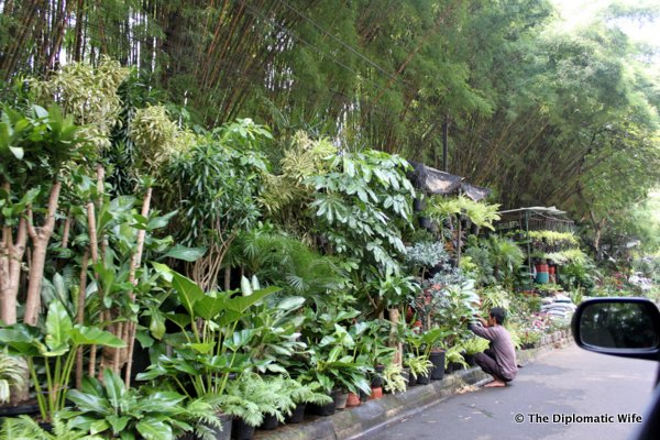 26-Sekitei Saturday Brunch Dharmawangsa Hotel-025