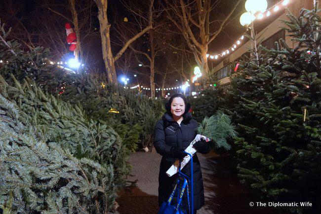 Adenauerplatz-Weihnachtsbaume-christmas-tree-lot-002