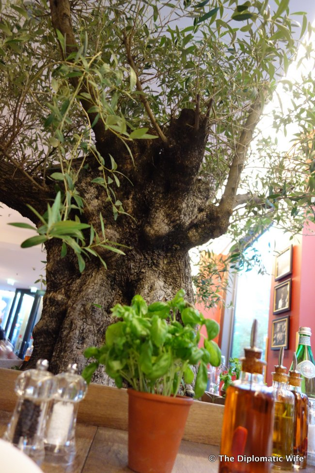 vapiano italian restaurant-005