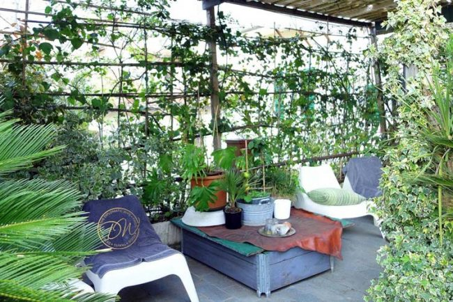 florence-santo-spirito-vintage-terrace-airbnb-013