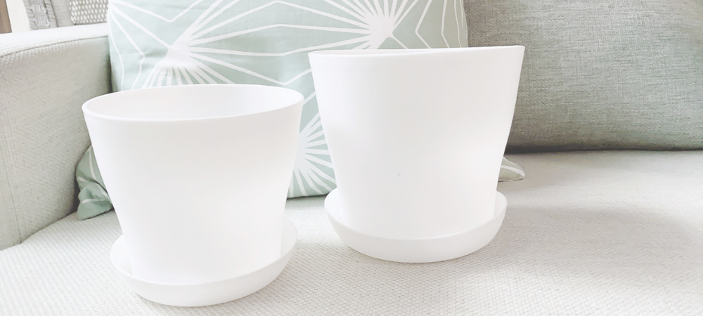 Where to Get White Pots with Drain Plates in the Philippines
